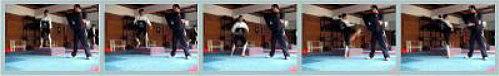 2008-12-24_(A)x_masTaekwondo_Taekwondo_y_Pliometría_PLIO2b