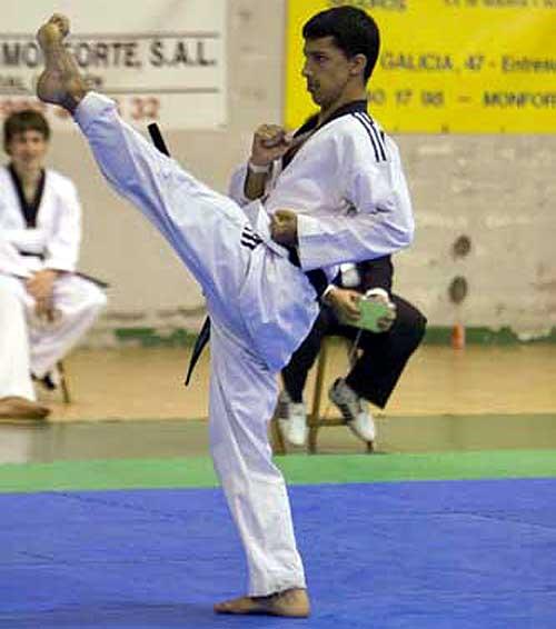 Taekwondo y las Ciencias Aplicadas: Preparación Técnica