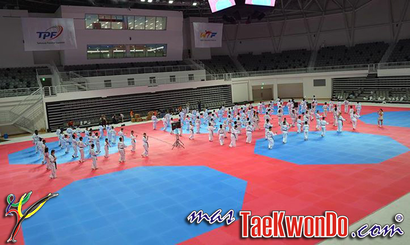 Areas-Octogonales-Taekwondo
