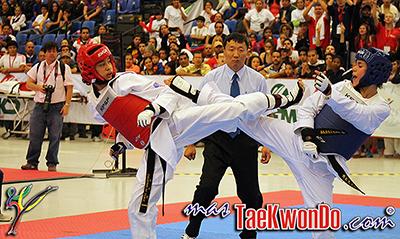 Imágenes del Pan Americano Abierto 2013 Internacional de Taekwondo, y el Panamericano Juvenil y de Cadetes que se llevan a cabo en el Centro de Congresos de la ciudad de Querétaro, México.
