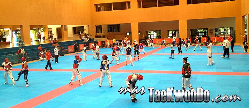 2014-06-14_(85726)x_LaLoma_Taekwondo