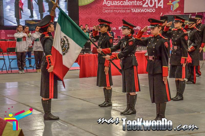 Inauguracion Aguascalientes 2014, bandera