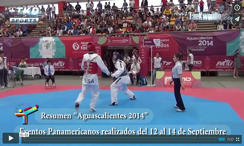 Video Resumen de Aguascalientes 2014