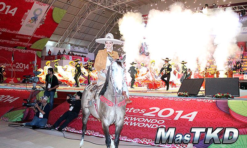 Ceremonia de Apertura del Mundial de Poomsae 2014