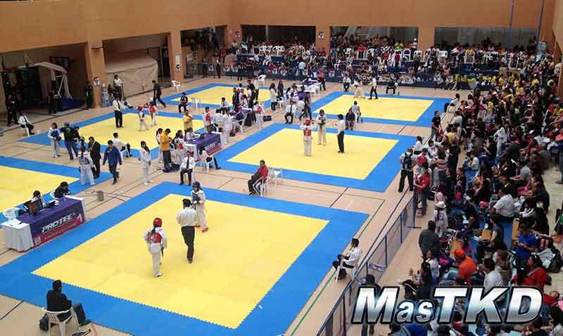 World-Taekwondo-Open_