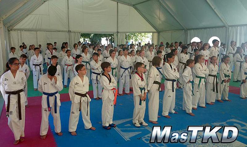 SO7_Taekwondo