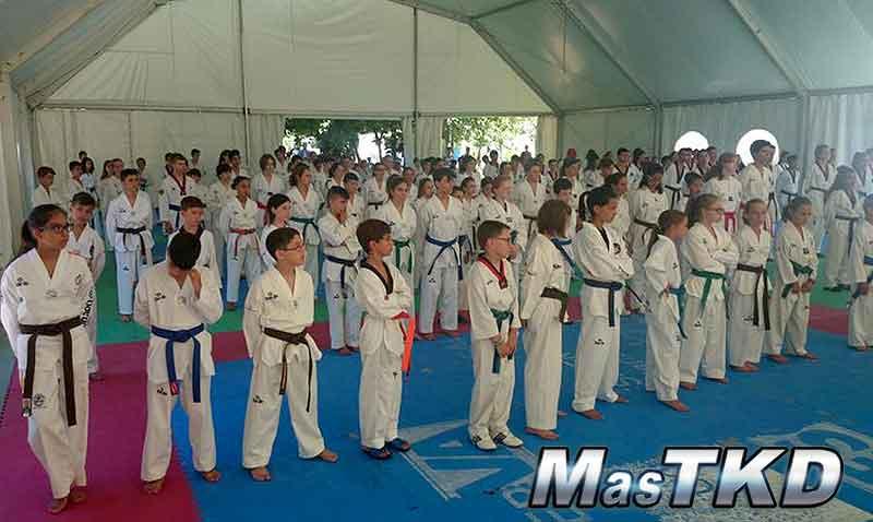 SO7_Taekwondo_home