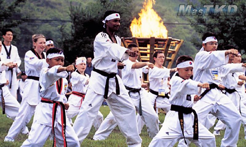 La-Naturaleza-del-Taekwondo