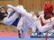 Imágenes del 2018 U.S. Open Taekwondo Championships