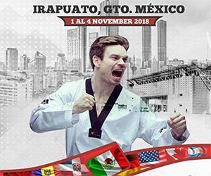 International Open Taekwondo Of The Best Schools