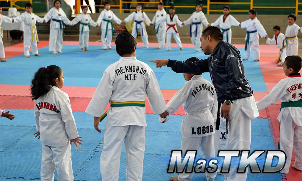 PROFESOR-EXPLICANDO-Taekwondo_