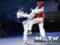 "Imágenes de ""Roma 2019"" World Taekwondo Grand Prix"