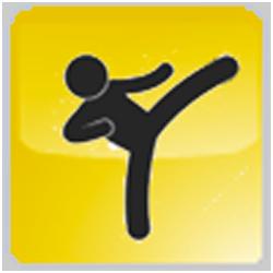 Taekwondo-WMG-2013