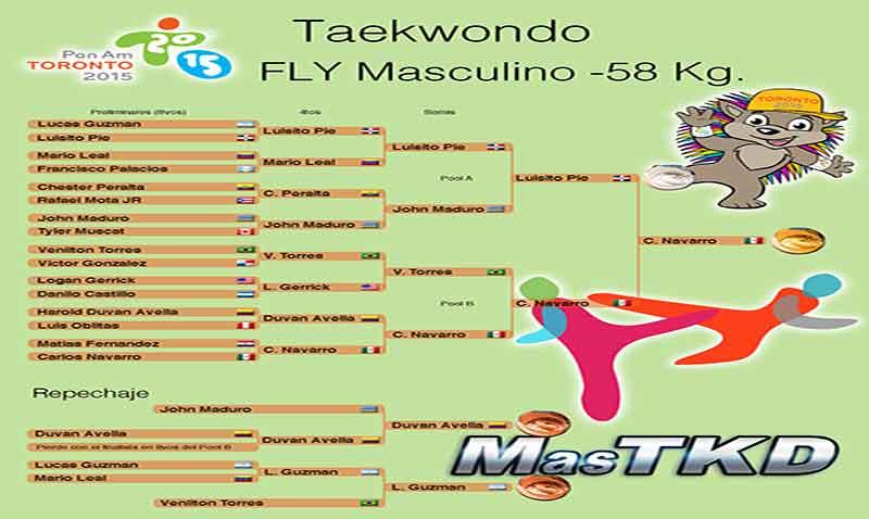 taekwondo_home-Progresion