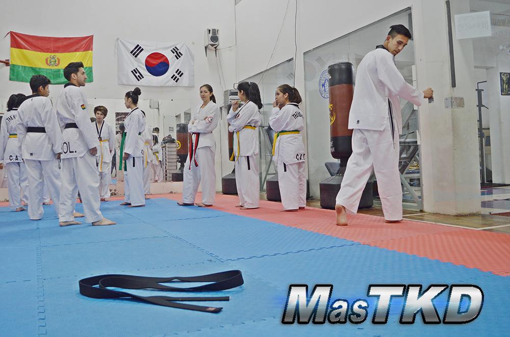 Taekwondo-Cinta-Negra