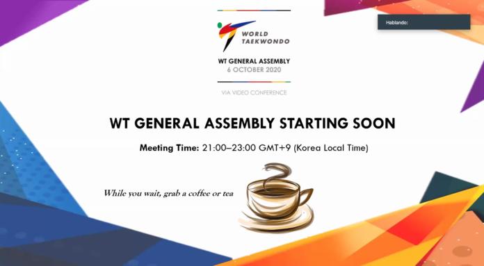 Assembleia Geral WT Virtual histórica com mais de 300 participantes