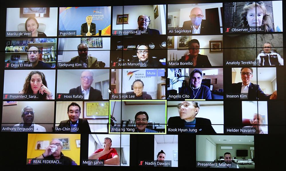 Virtual WT Council Meeting on November 24